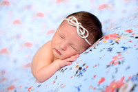 Everly's Newborn Session